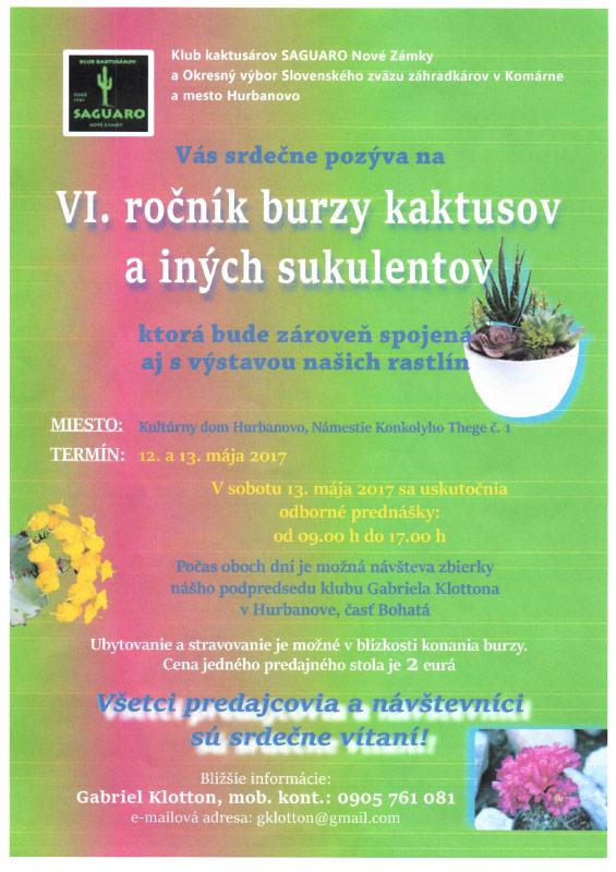 kaktus-sk