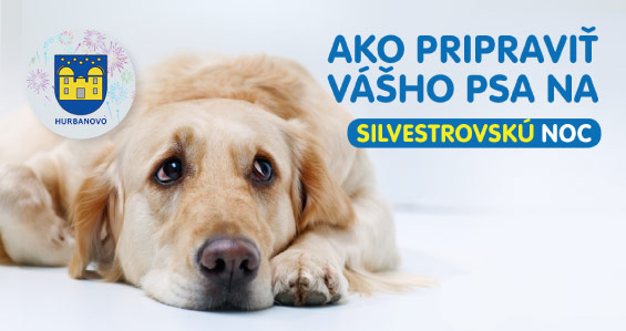 silvester19-post